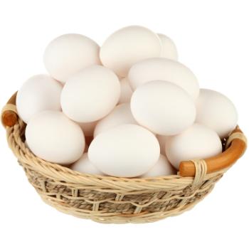 Olas baltās M 10gb
