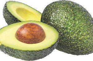 Avokado mazie  Kenija  2.šķ. 1 gb