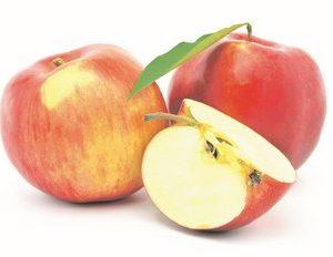 Āboli 0.5kg